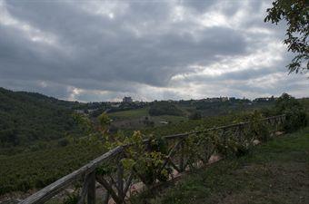 Castellina_in_Chianti, CAMPIONATO ITALIANO VEL. SALITA AUTO STORICHE