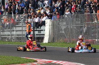 Prodriver Over   Marco Ruschioni (Energy Tm), CAMPIONATO ITALIANO ACI KARTING