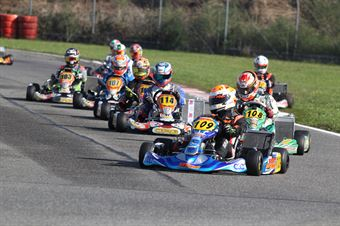 KZ2   Alessandro Buran (BRM TM), CAMPIONATO ITALIANO ACI KARTING