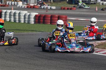 Prodriver Under   Alessandro Pelizzari (Energy Modena), CAMPIONATO ITALIANO ACI KARTING