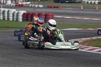Prodriver Under   Jacopo Prescendi (Tony Kart Tm), CAMPIONATO ITALIANO ACI KARTING