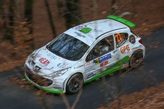 Stefano Liburdi, Andrea Colapietro (Peugeot 2017 S.2000 #22, Motor Group), CAMPIONATO ITALIANO WRC