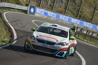 Andrea PALAZZO (Peugeot 308 RC #100),