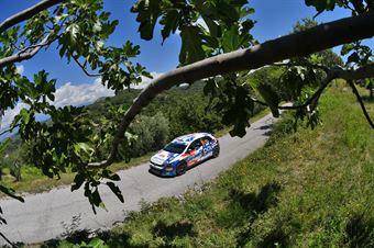 Fabian Kreim Christian Frank, Volkswagen Polo R5 #20, ITALIAN RALLY CHAMPIONSHIP