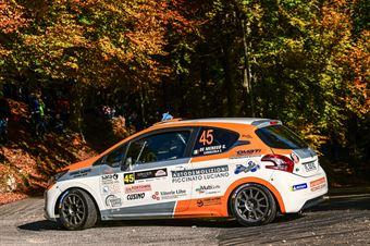 DE MENEGO GIOVANNI CAMAZZOLA CHRISTIAN, PEUGEOT 208 VTI R2B #45, CAMPIONATO ITALIANO WRC