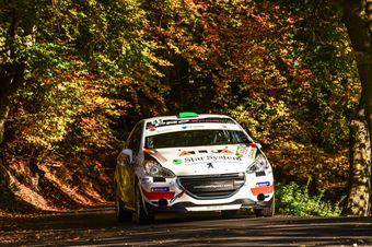 LORENZATO ALEX GUADAGNIN CARLO, PEUGEOT 208 R2B #41, CAMPIONATO ITALIANO WRC